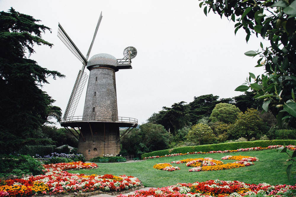 Golden Gate Park - West End